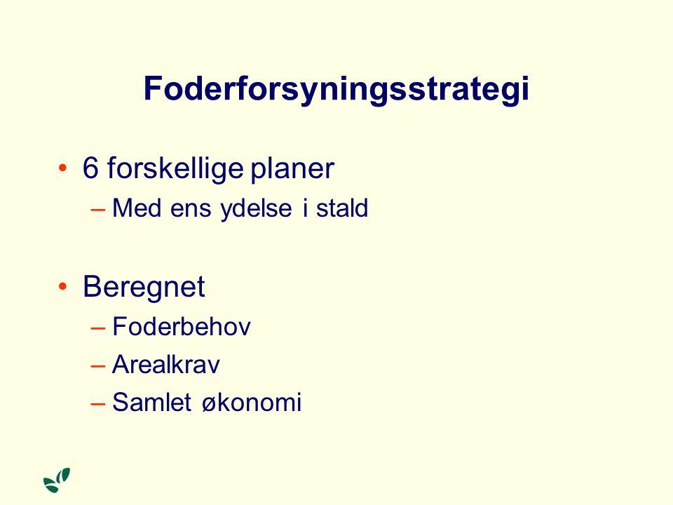 Foderforsyningsstrategi
