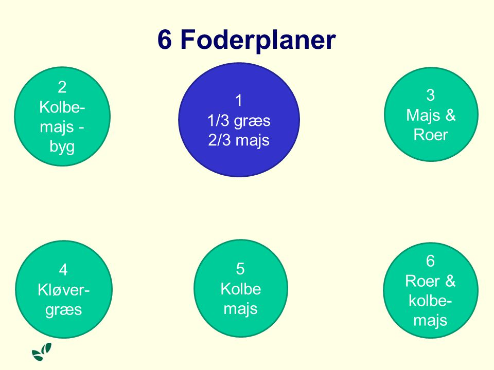6 Foderplaner 2 Kolbe-majs - byg 1 3 1/3 græs Majs & Roer 2/3 majs 6 4