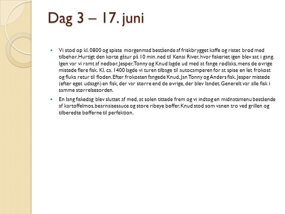 Dag 3 – 17. juni
