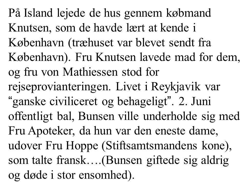 På Island lejede de hus gennem købmand Knutsen, som de havde lært at kende i København (træhuset var blevet sendt fra København).