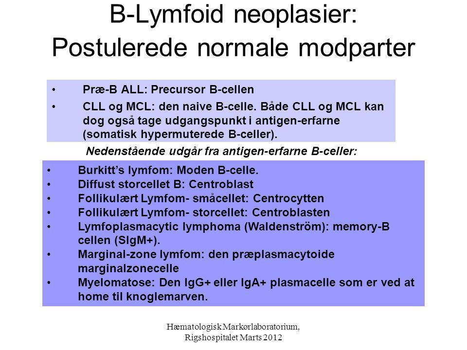 B-Lymfoid neoplasier: Postulerede normale modparter