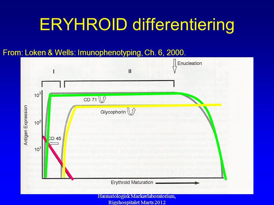 ERYHROID differentiering