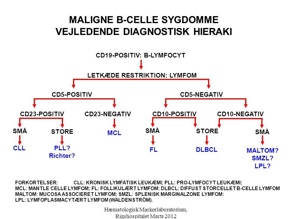 MALIGNE B-CELLE SYGDOMME VEJLEDENDE DIAGNOSTISK HIERAKI