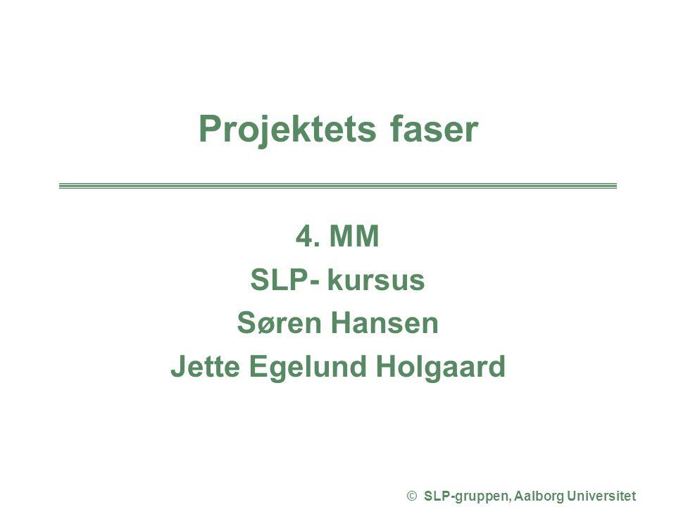 Jette Egelund Holgaard © SLP-gruppen, Aalborg Universitet
