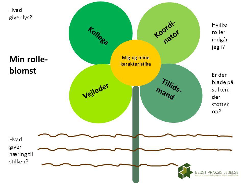Min rolle- blomst Koordi- Kollega nator Vejleder Tillids- mand