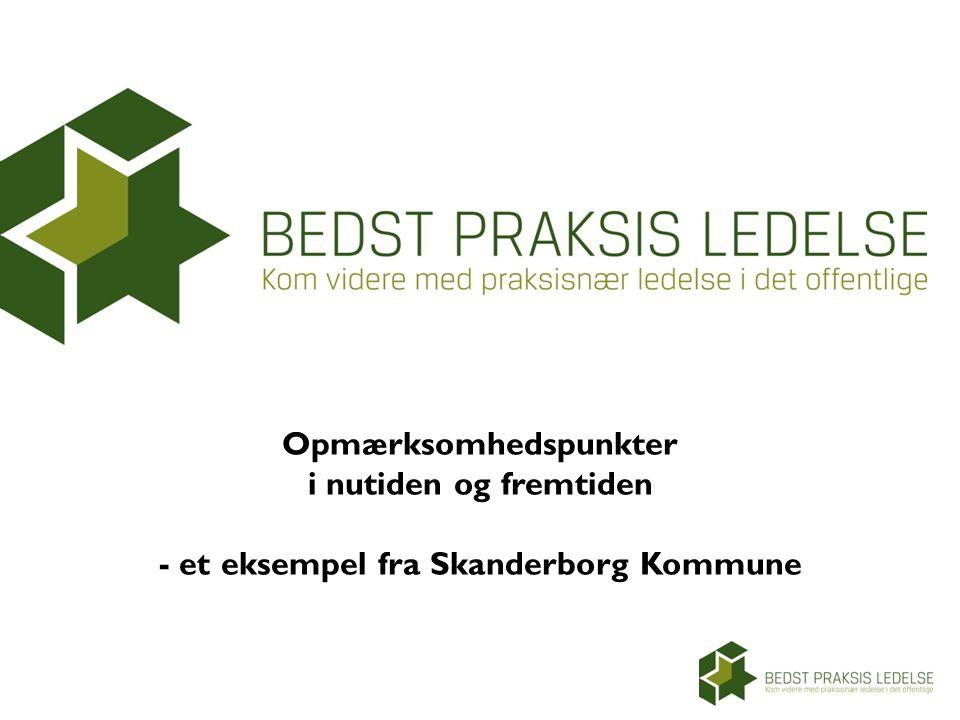 Opmærksomhedspunkter i nutiden og fremtiden - et eksempel fra Skanderborg Kommune