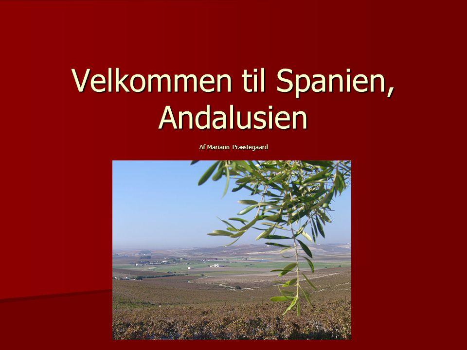 Velkommen til Spanien, Andalusien Af Mariann Præstegaard