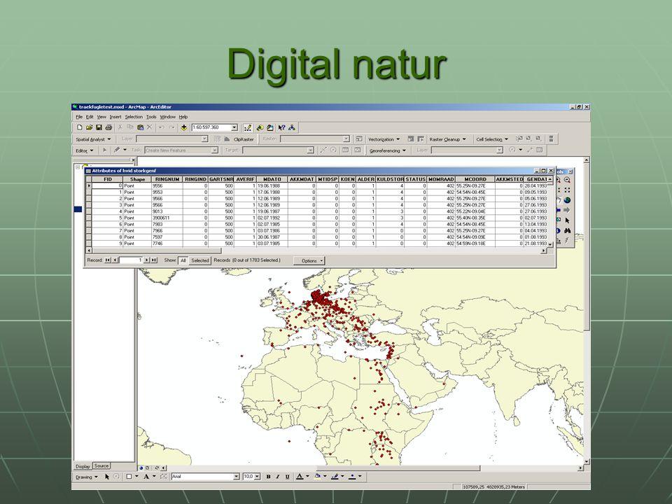 Digital natur