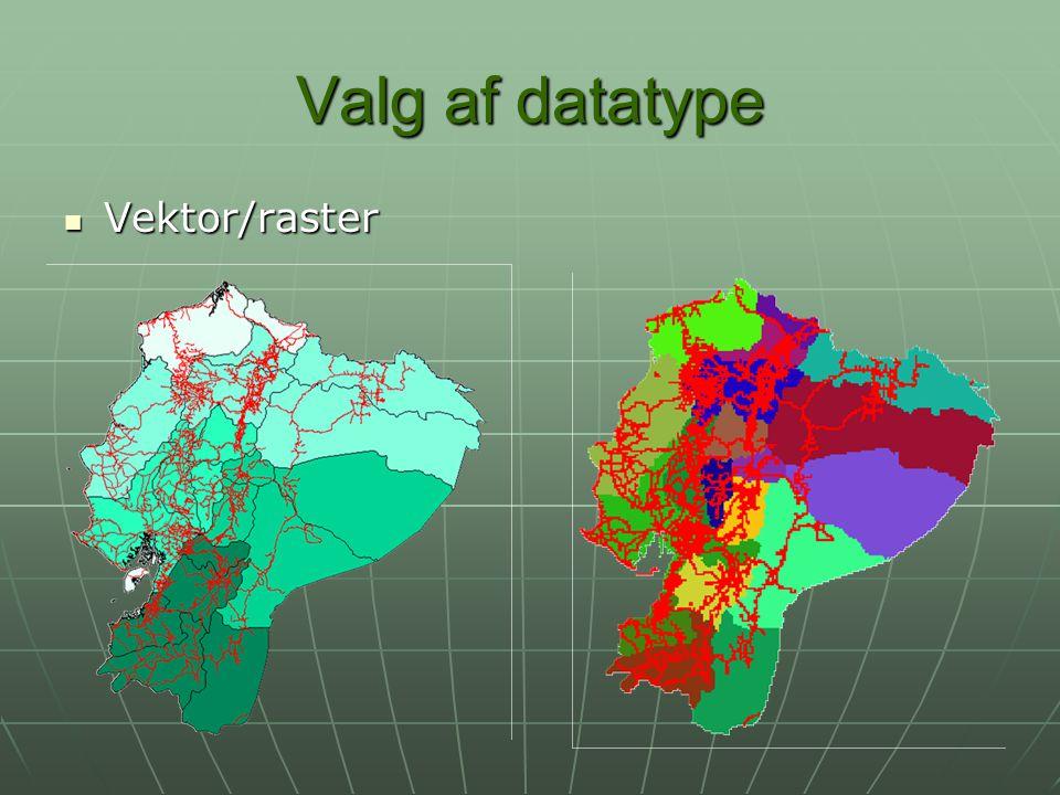 Valg af datatype Vektor/raster