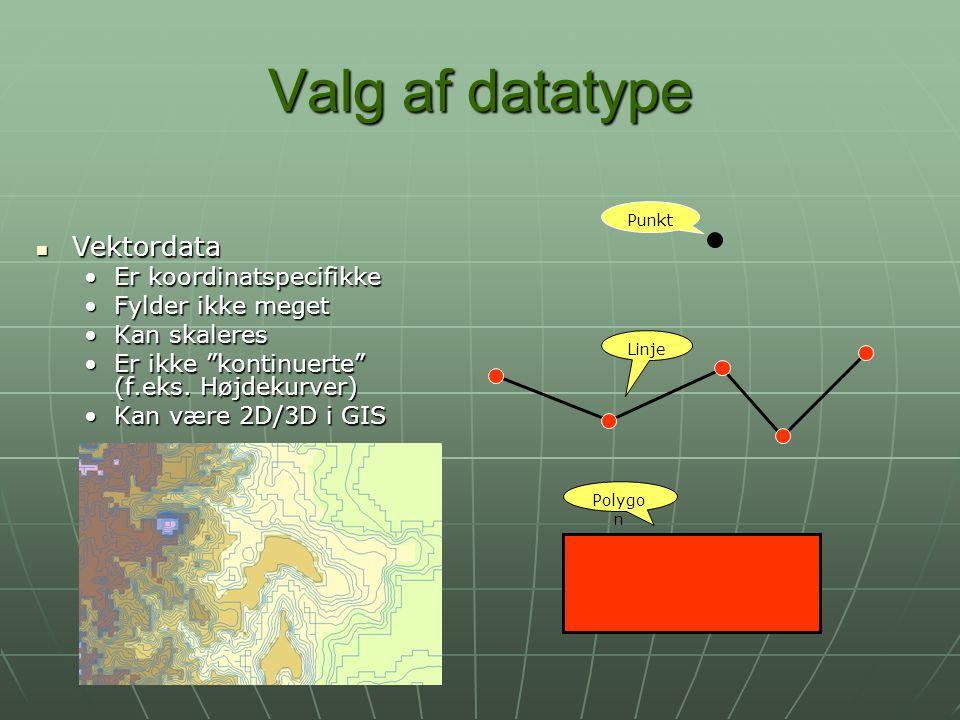 Valg af datatype Vektordata Er koordinatspecifikke Fylder ikke meget