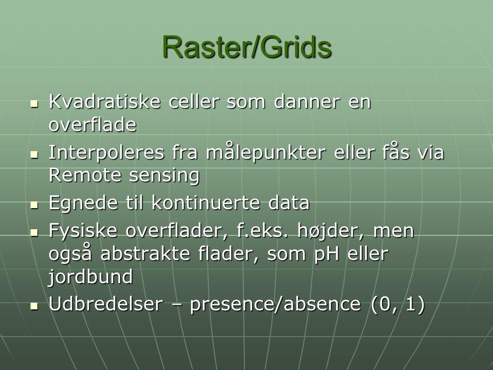 Raster/Grids Kvadratiske celler som danner en overflade