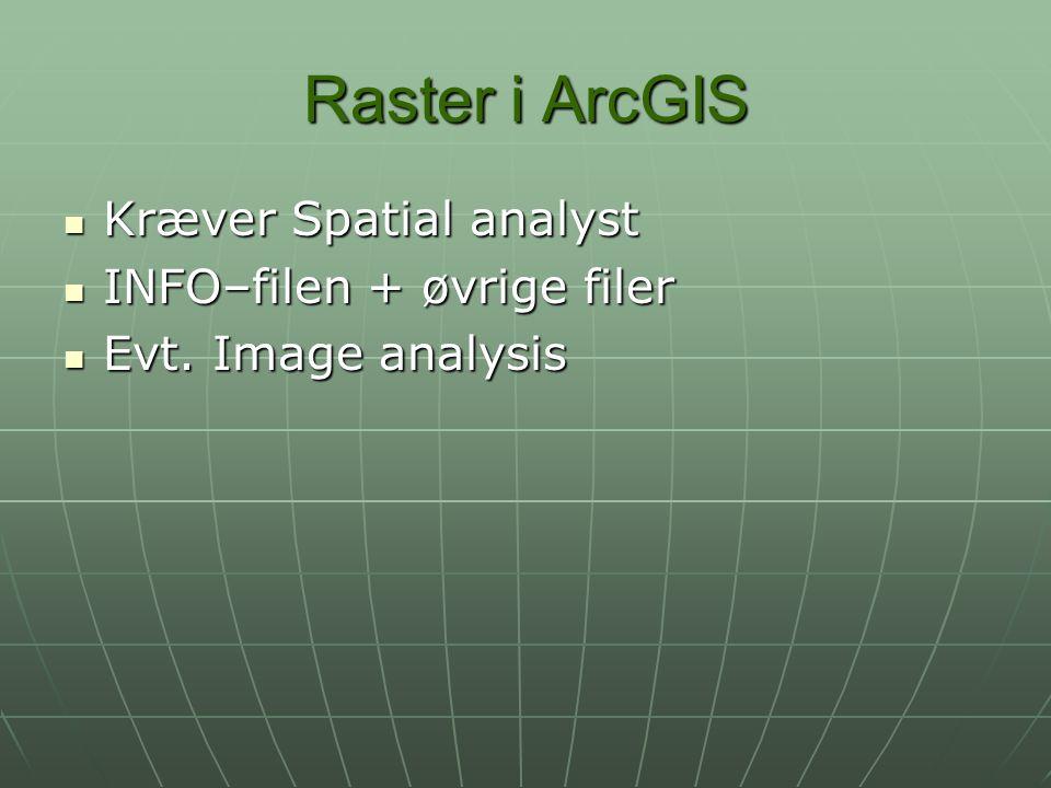 Raster i ArcGIS Kræver Spatial analyst INFO–filen + øvrige filer