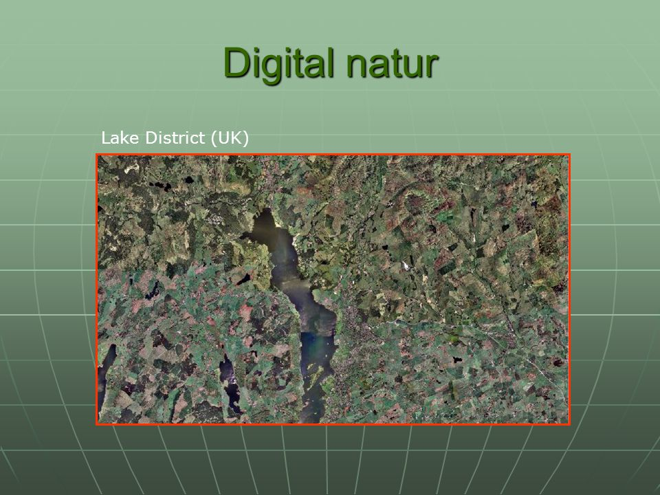 Digital natur Lake District (UK)