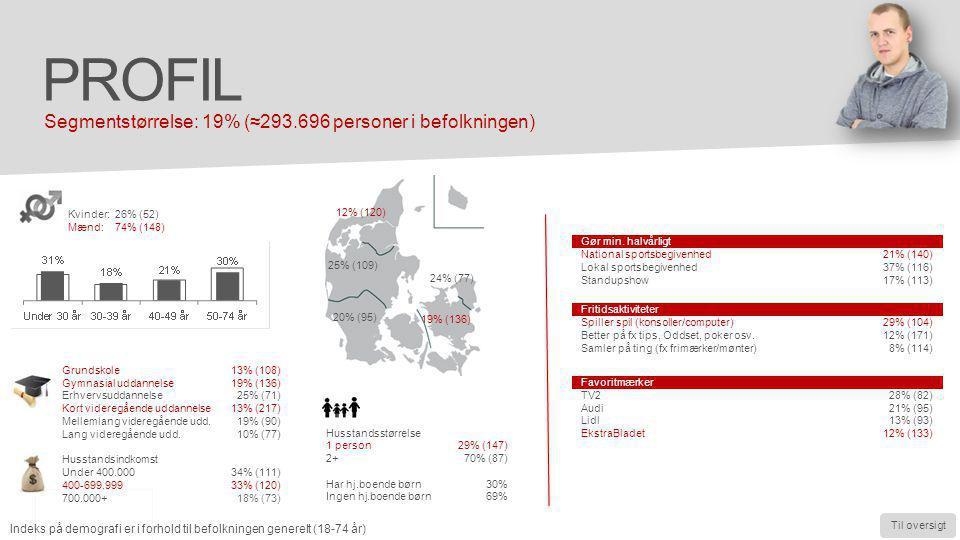 Profil Segmentstørrelse: 19% (≈293.696 personer i befolkningen)