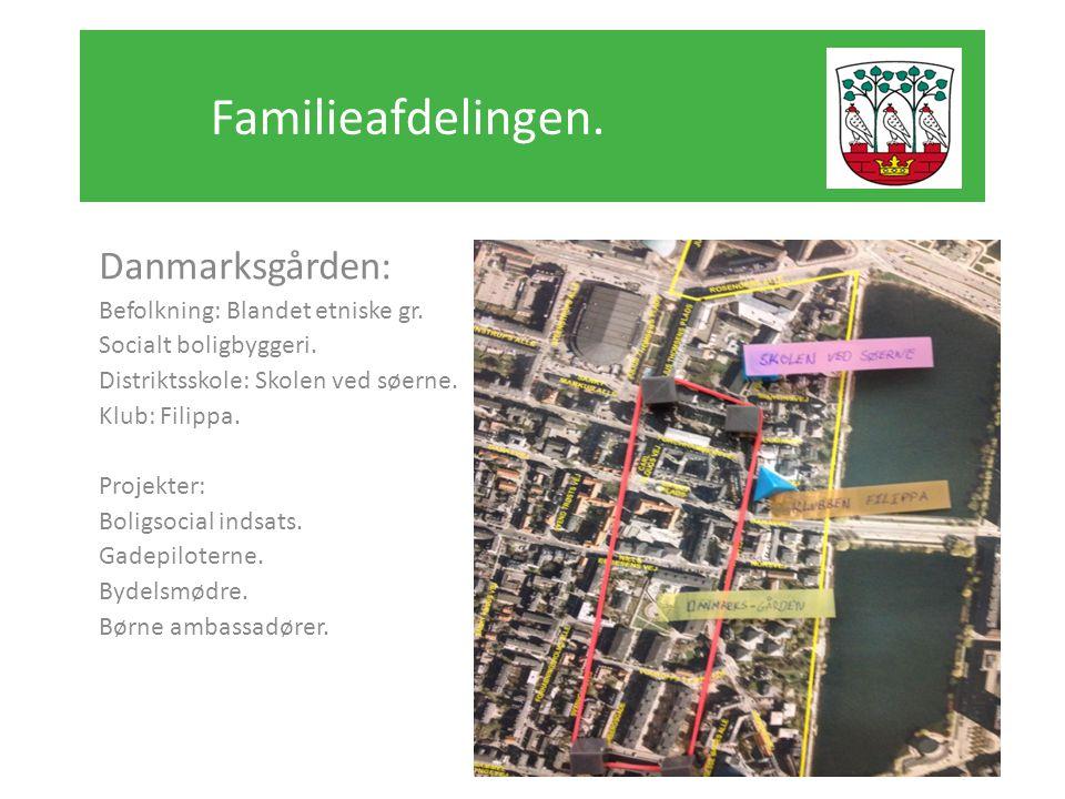 Familieafdelingen. Danmarksgården: Befolkning: Blandet etniske gr.