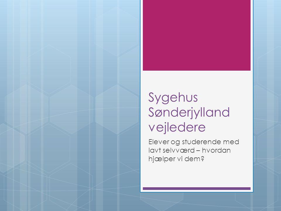 Sygehus Sønderjylland vejledere