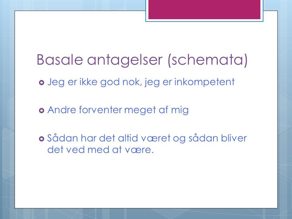 Basale antagelser (schemata)