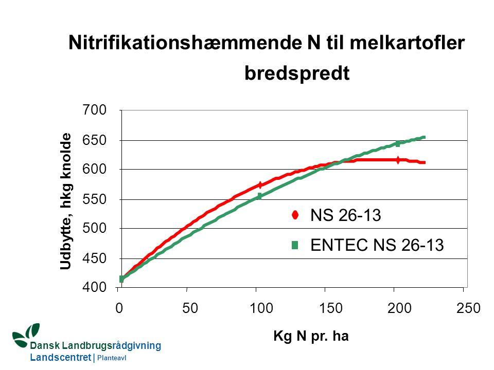 Nitrifikationshæmmende N til melkartofler
