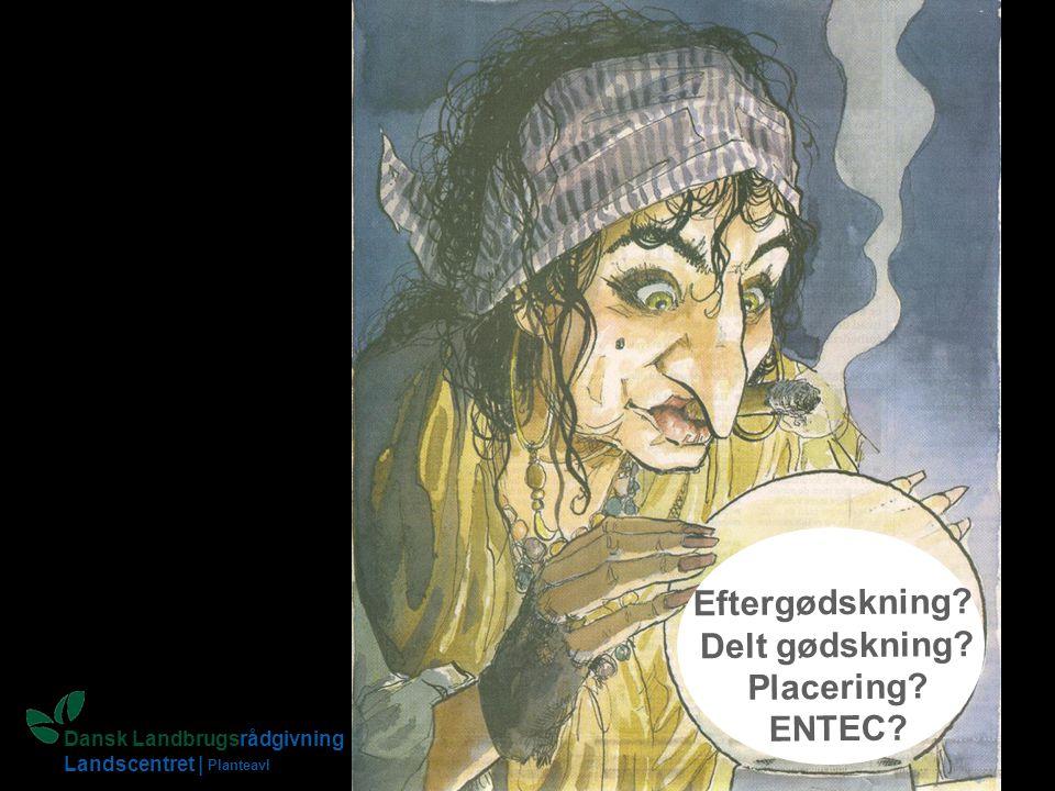 Eftergødskning Delt gødskning Placering ENTEC