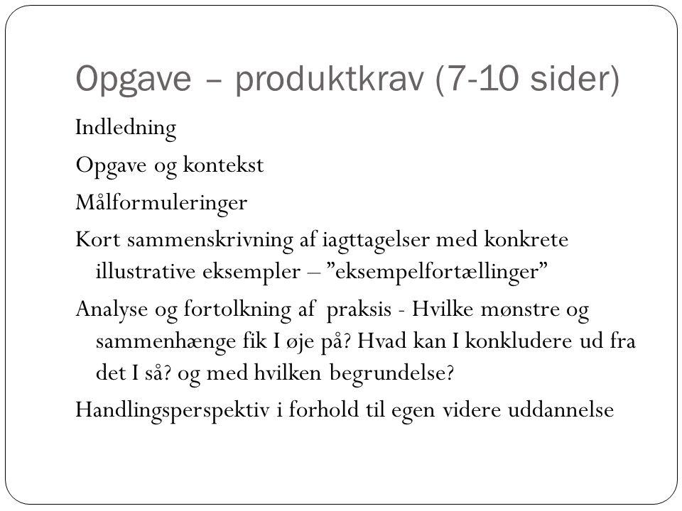 Opgave – produktkrav (7-10 sider)