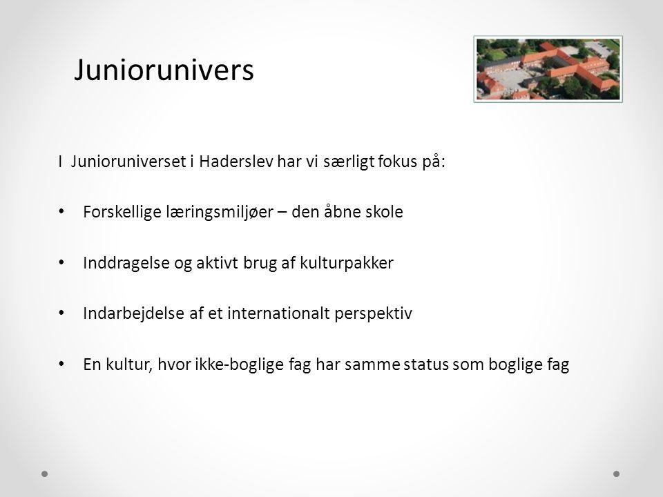 Juniorunivers I Junioruniverset i Haderslev har vi særligt fokus på: