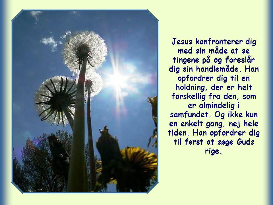 Jesus konfronterer dig med sin måde at se tingene på og foreslår dig sin handlemåde.