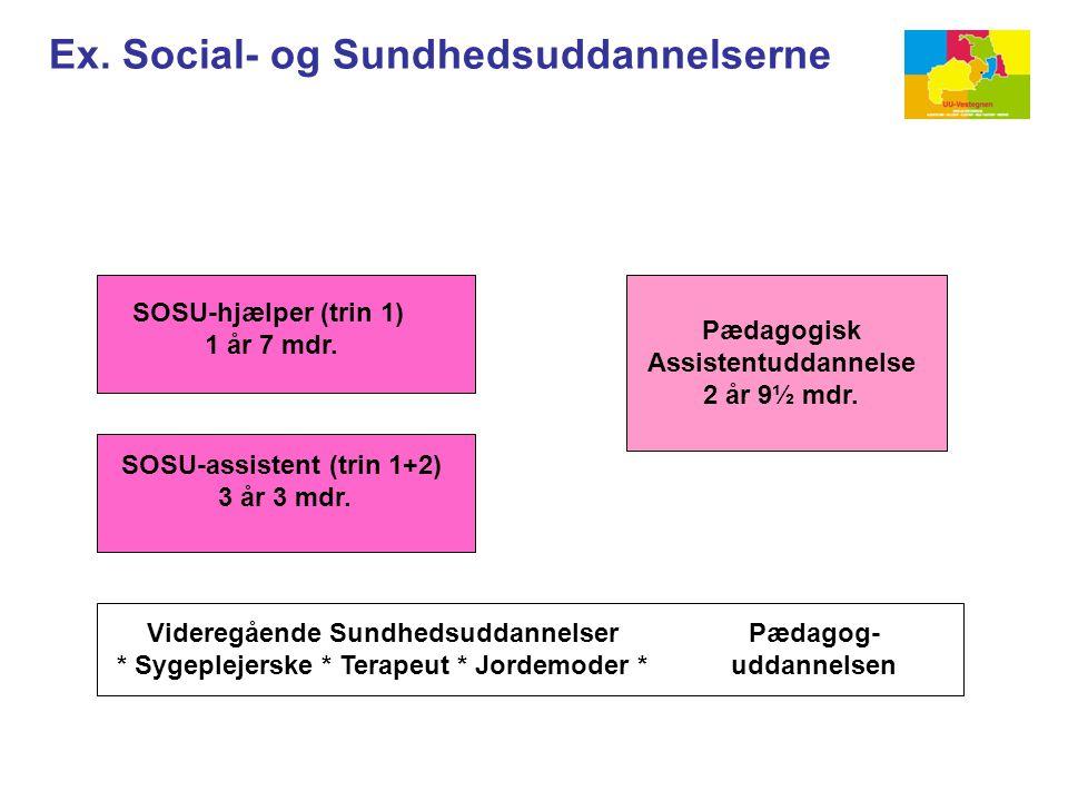 Ex. Social- og Sundhedsuddannelserne