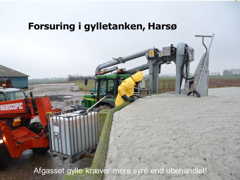 Forsuring i gylletanken, Harsø