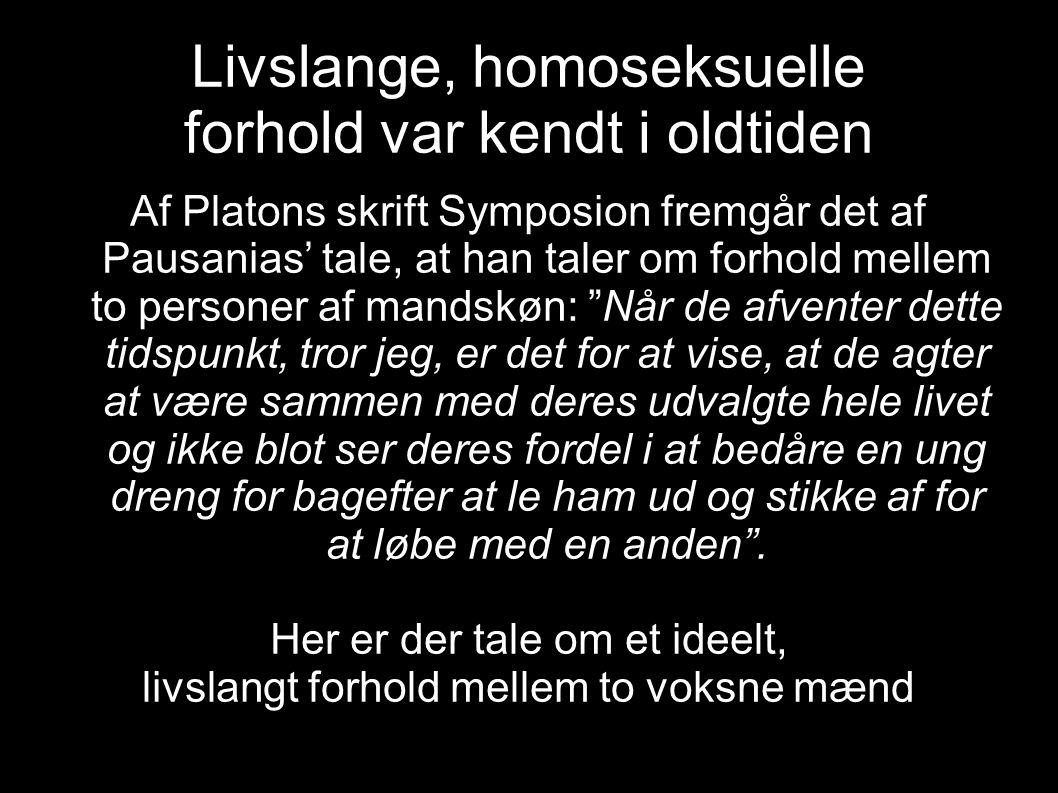 Livslange, homoseksuelle forhold var kendt i oldtiden