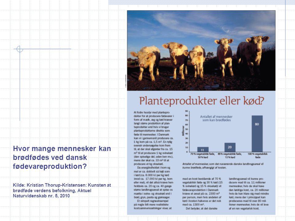 Hvor mange mennesker kan brødfødes ved dansk fødevareproduktion