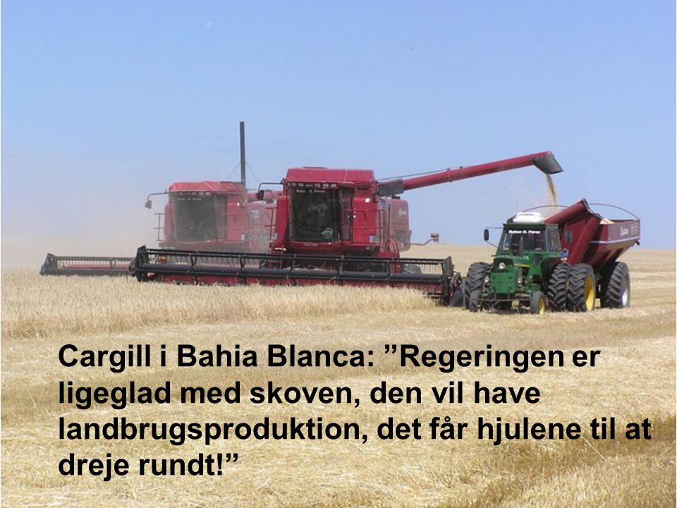 Cargill i Bahia Blanca: Regeringen er ligeglad med skoven, den vil have landbrugsproduktion, det får hjulene til at dreje rundt!