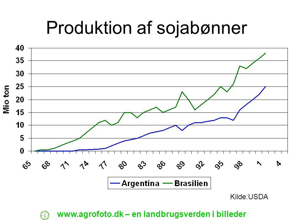 Produktion af sojabønner