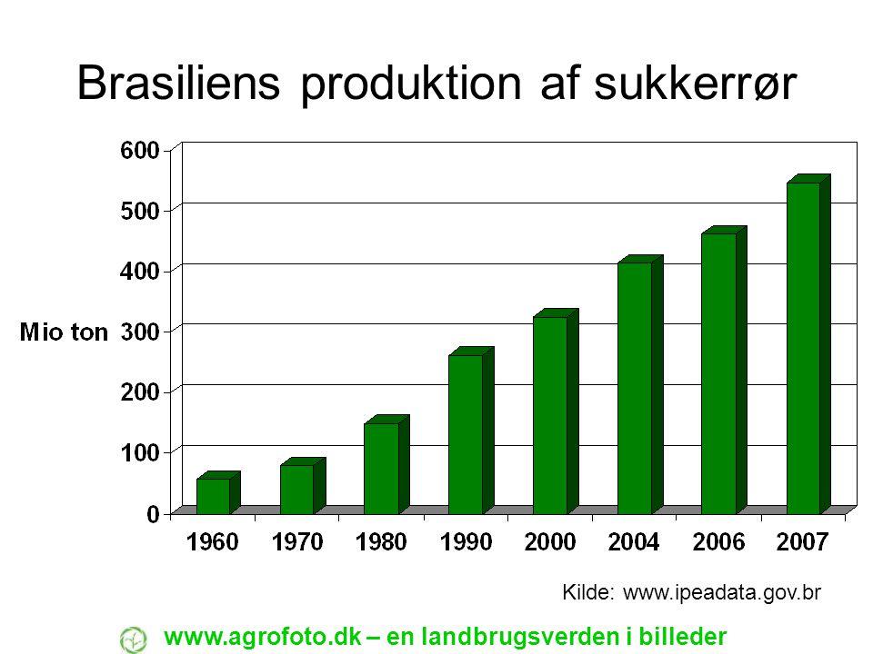 Brasiliens produktion af sukkerrør