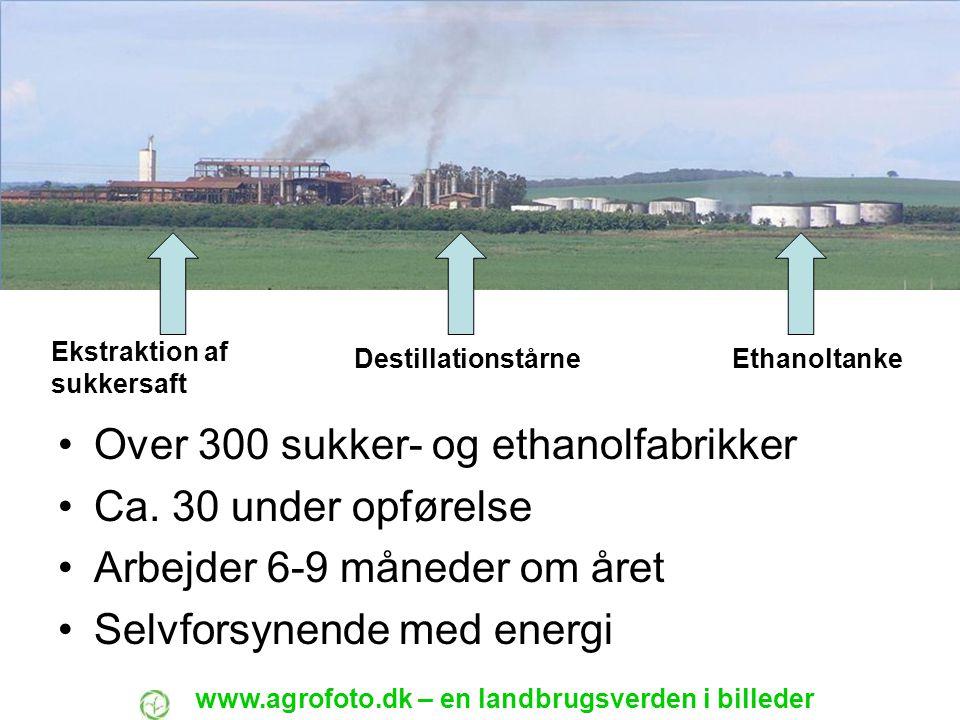 Over 300 sukker- og ethanolfabrikker Ca. 30 under opførelse