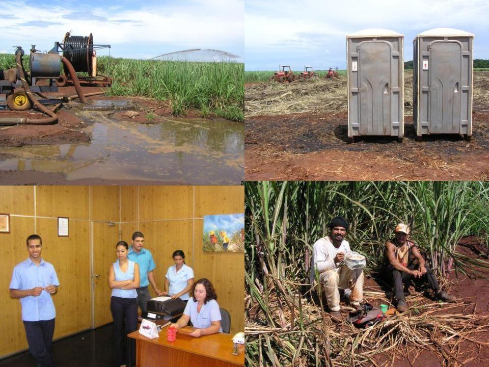 Miljø og arbejdsmiljø Vaskevandet og vinassen pumpes i et rørsystem ud på de tilstødende marker, hvor det spredes og bruges som gødning.
