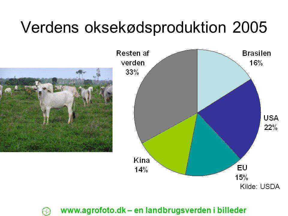 Verdens oksekødsproduktion 2005