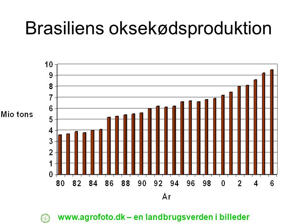 Brasiliens oksekødsproduktion