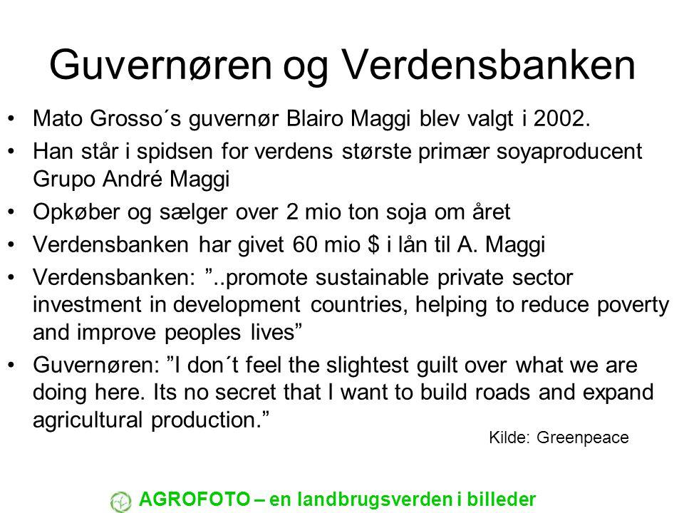 Guvernøren og Verdensbanken