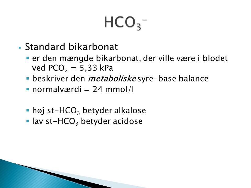 HCO3- Standard bikarbonat