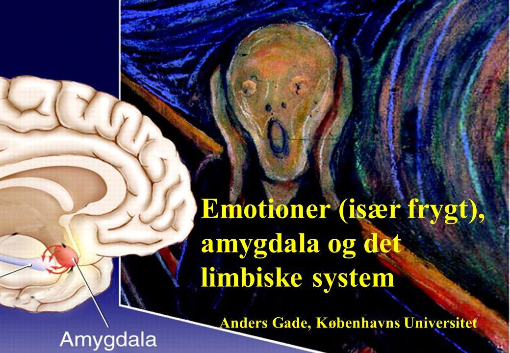 Emotioner (især frygt), amygdala og det limbiske system Anders Gade, Københavns Universitet