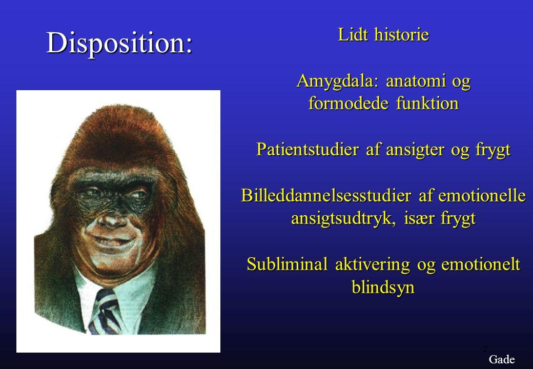 Disposition: Lidt historie Amygdala: anatomi og formodede funktion