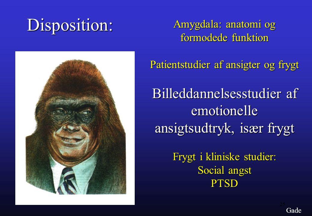 Disposition: Billeddannelsesstudier af emotionelle