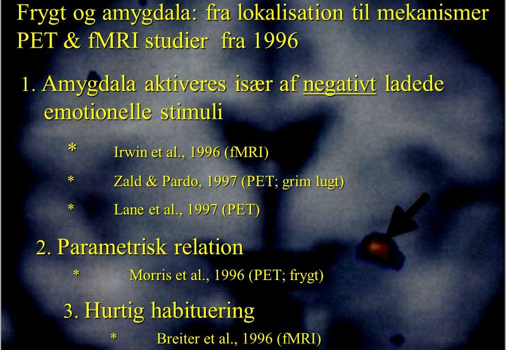 Frygt og amygdala: fra lokalisation til mekanismer