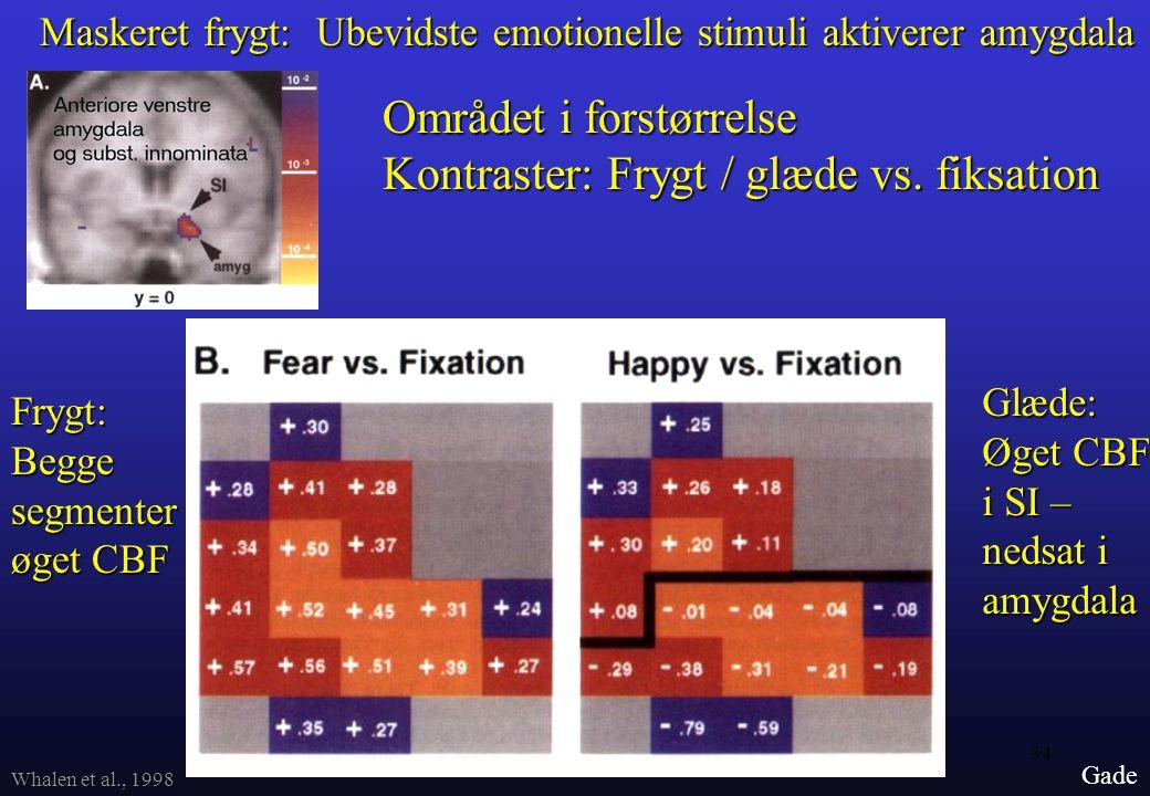 Området i forstørrelse Kontraster: Frygt / glæde vs. fiksation