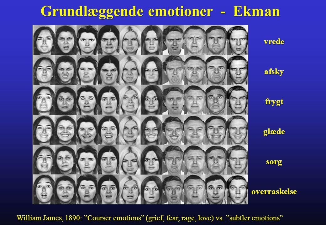 Grundlæggende emotioner - Ekman