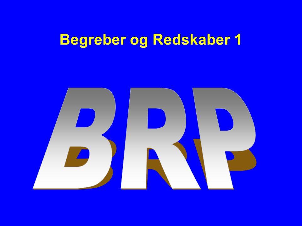 Begreber og Redskaber 1 BRP