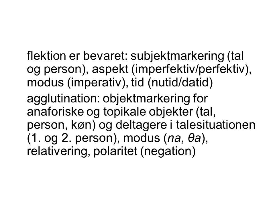 flektion er bevaret: subjektmarkering (tal og person), aspekt (imperfektiv/perfektiv), modus (imperativ), tid (nutid/datid)
