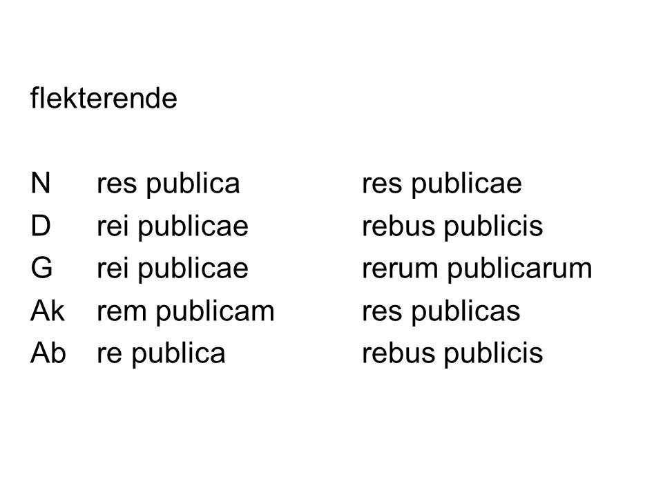 flekterende N res publica res publicae. D rei publicae rebus publicis. G rei publicae rerum publicarum.