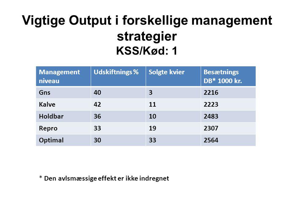 Vigtige Output i forskellige management strategier