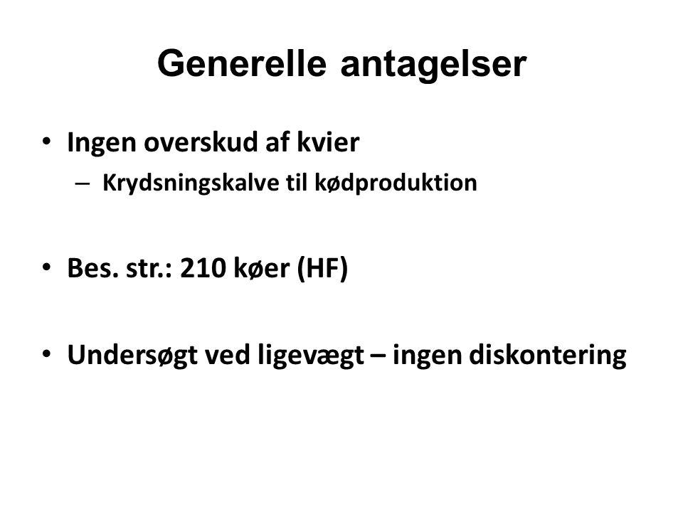Generelle antagelser Ingen overskud af kvier Bes. str.: 210 køer (HF)